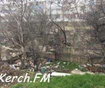 В Керчи в развалины на Буденного люди сносят мусор