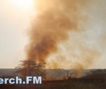 МЧС напоминает о штрафах за сжигание сухой растительности