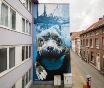 В Евпатории пройдёт фестиваль стрит-арта