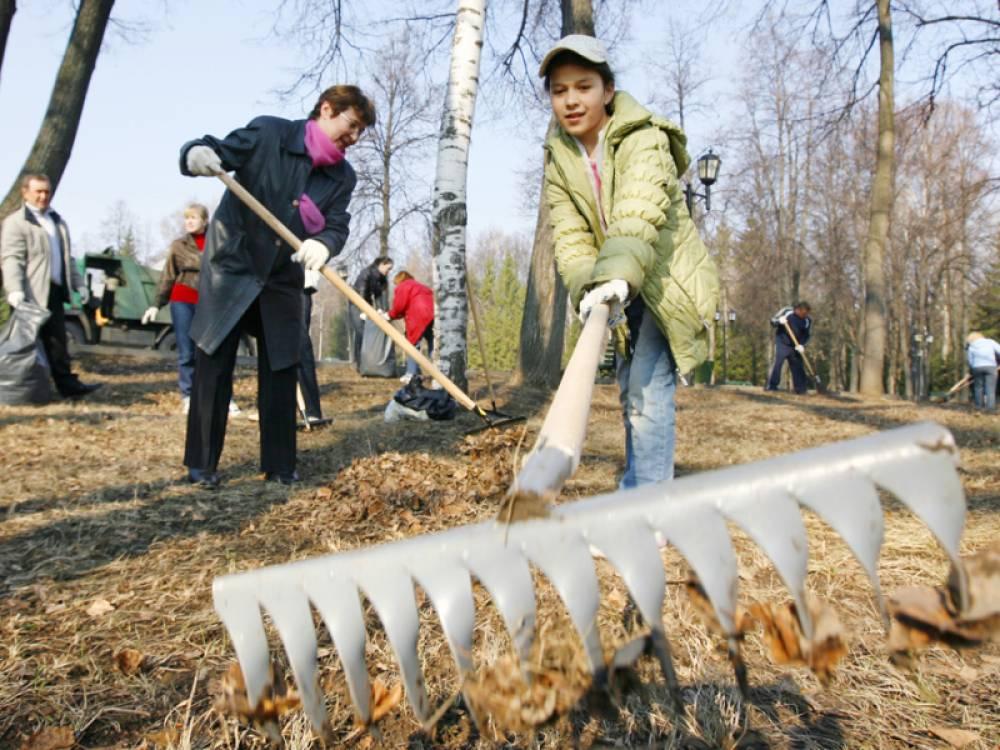 Фото новости - Администрация и депутаты уберут Комсомольский парк