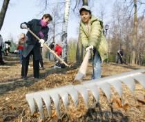 Администрация и депутаты уберут Комсомольский парк