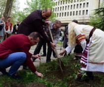 Делегация из Болгарии высадила в центре Симферополя 60 кустов роз