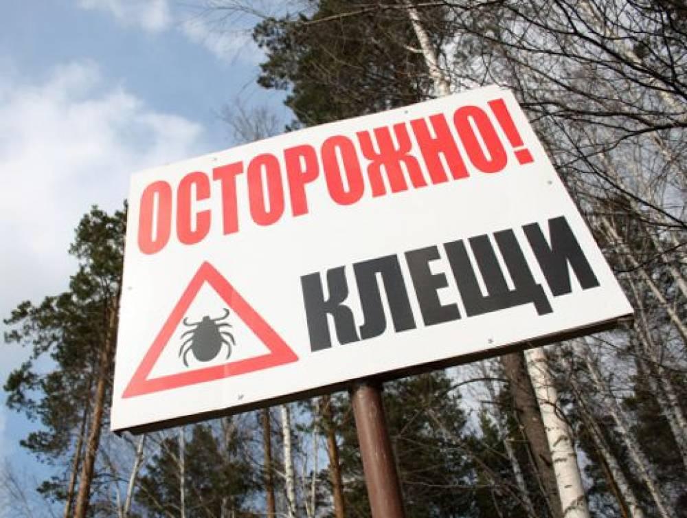 Фото новости - Более 10 тысяч россиян укушены клещями