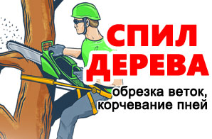 Логотип Полищук