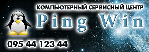 PingWin, компьютерный Центр логотип