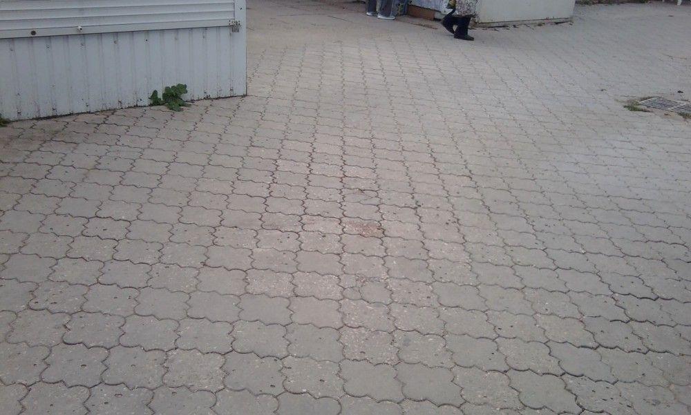В Феодосии окровавленные трупы собак полдня лежали на Крымском рынке