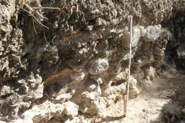 В Феодосии снова обнаружены уникальные артефакты!