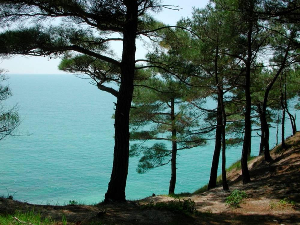 В Крыму пройдет ТВ-марафон по популяризации внутреннего туризма в России