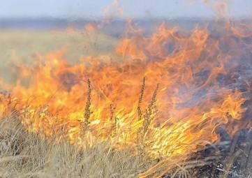 В Феодосии горит горный массив