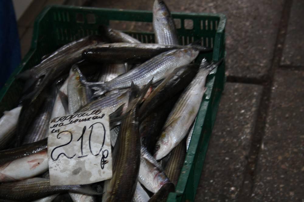 Феодосия сегодня. Цены на центральном рынке