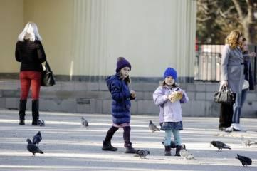Первые зимние гости Феодосии. И их встречи с местными