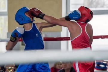 Фоторепортаж с республиканского турнира по боксу памяти  тренера Владимира Ефимова