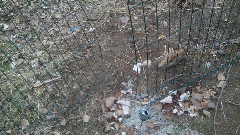 В Феодосии вандалы повредили забор и калитку приморской школы №11