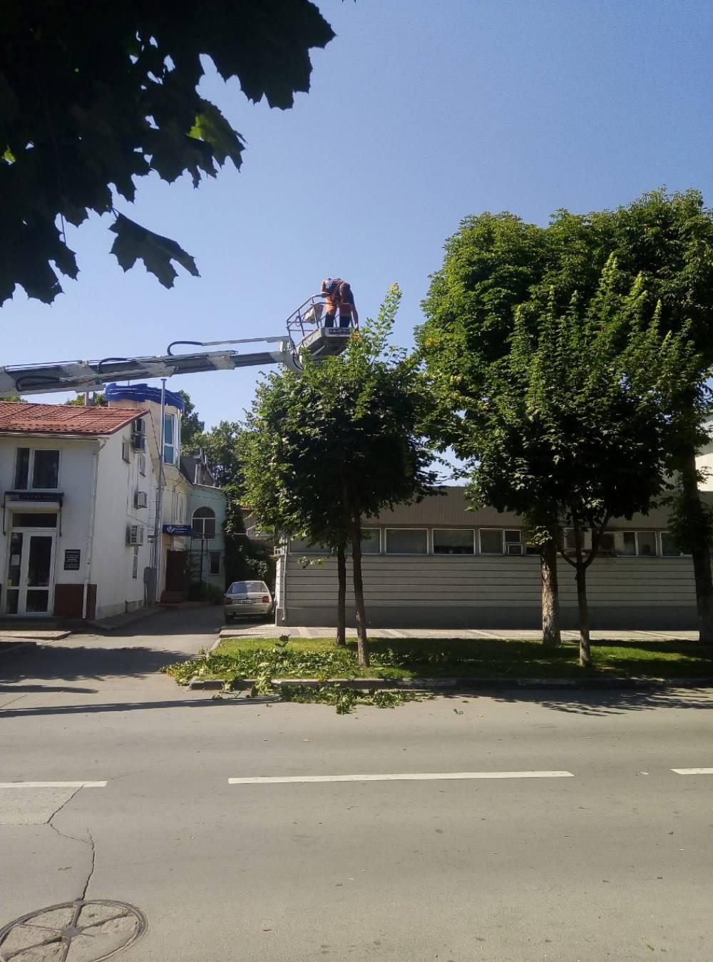 В Симферополе – работа с зелёными насаждениями