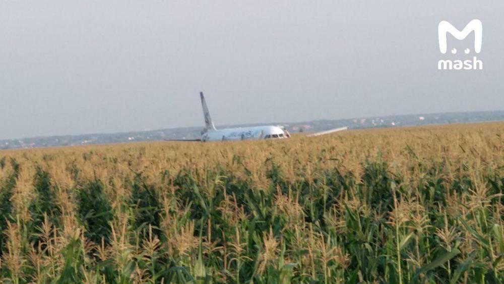 Летевший в Крым самолет экстренно сел в поле: есть пострадавшие (ФОТО, ВИДЕО)