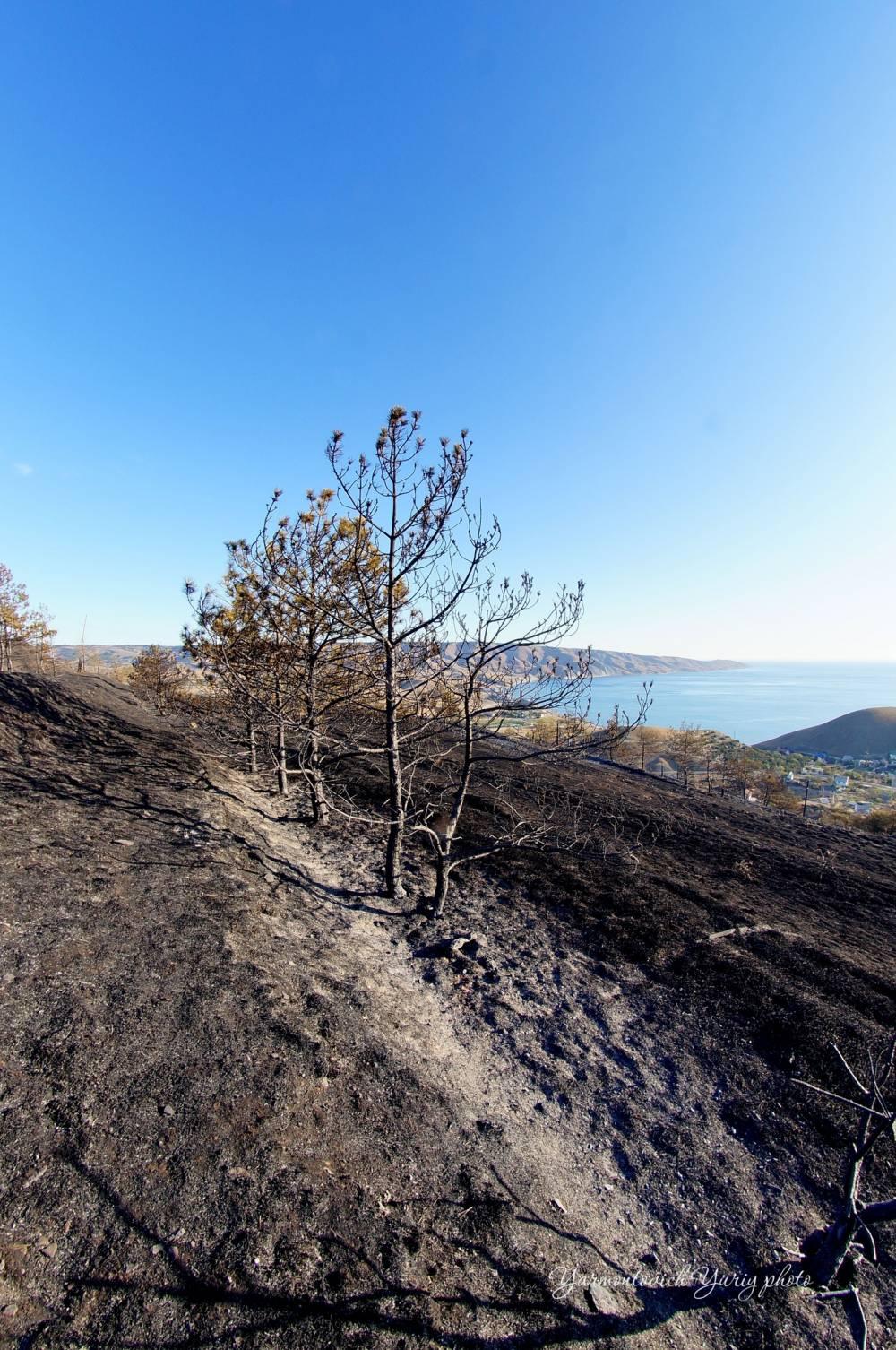 Окрестности Орджоникидзе после пожара