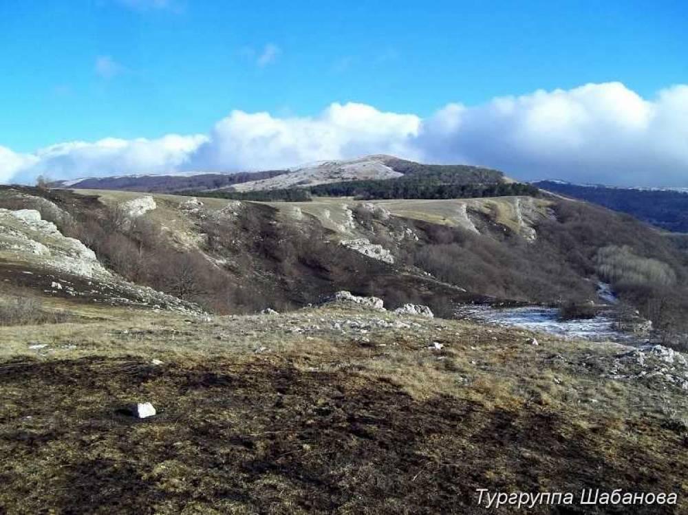 В Крыму установили причину масштабного пожара в урочище Курлюк-Баш