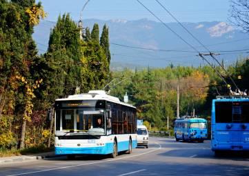 Назначение временного перевозчика на троллейбусные маршруты общего пользования
