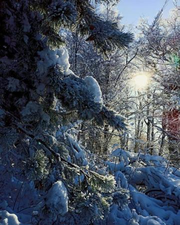 Победители января в фотоконкурсе «Крым 2020»