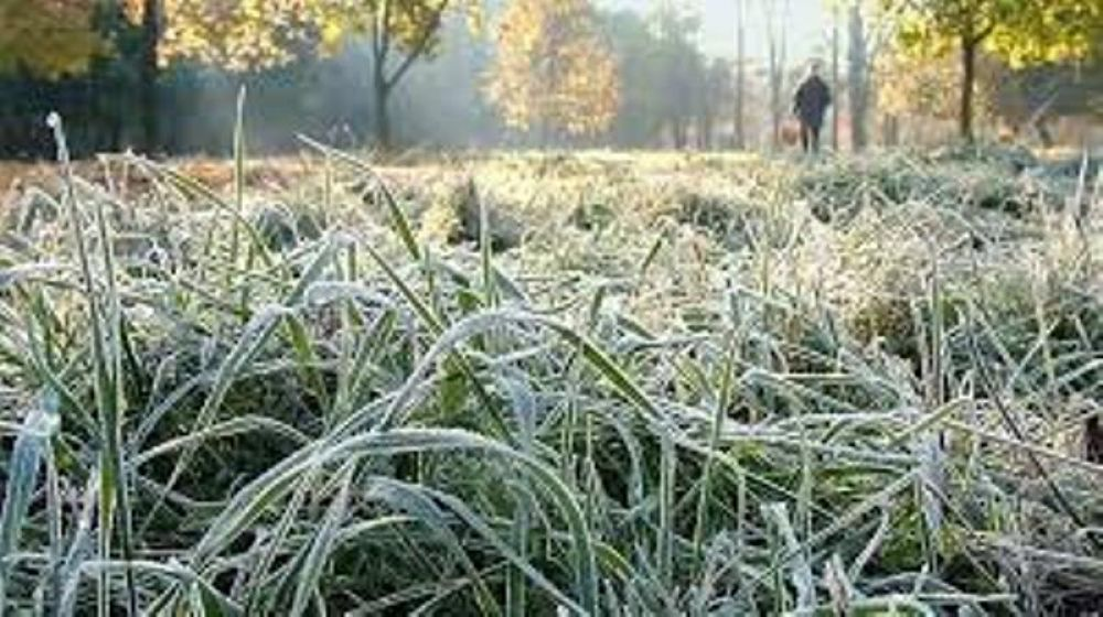 МЧС предупредило о заморозках на грунте