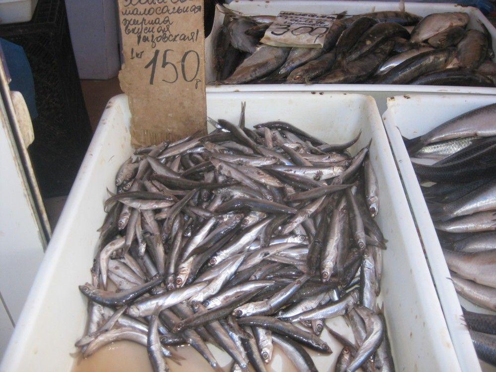 На рынке Феодосии дешевеют огурцы и куры, дорожает картофель и свинина