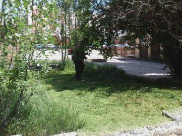 В Феодосии начали косить траву (ФОТО)