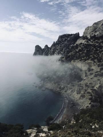 Крым2020: До подведения результатов в марта осталось две недели