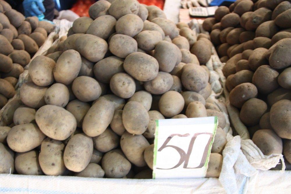 Постепенно снижаются цены на сезонные овощи и фрукты