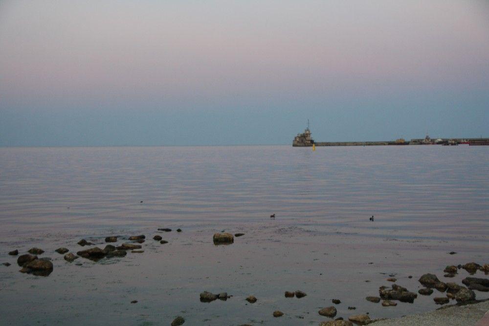 Черное море стало розовым
