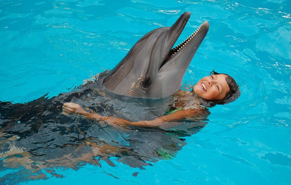 В Коктебеле завтра открывается дельфинарий