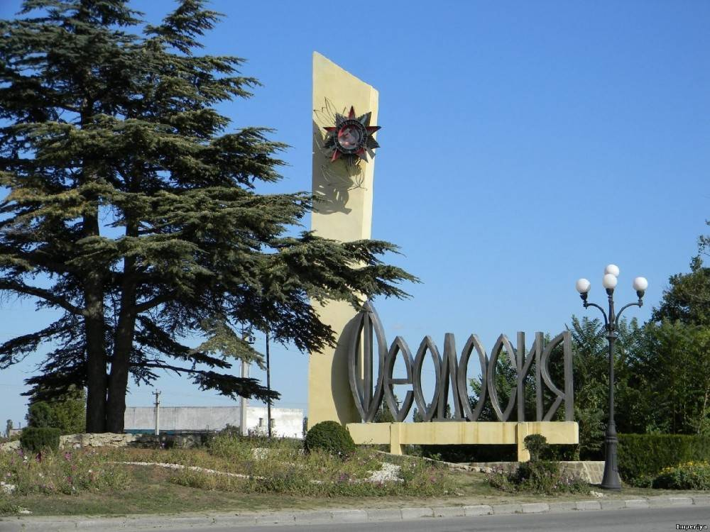 В Феодосии пересчитают кусты и деревья для составления сметы на их обновление