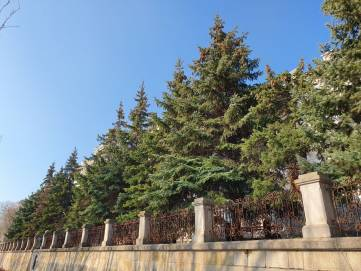 Карантин в Феодосии соблюдается (Фото)