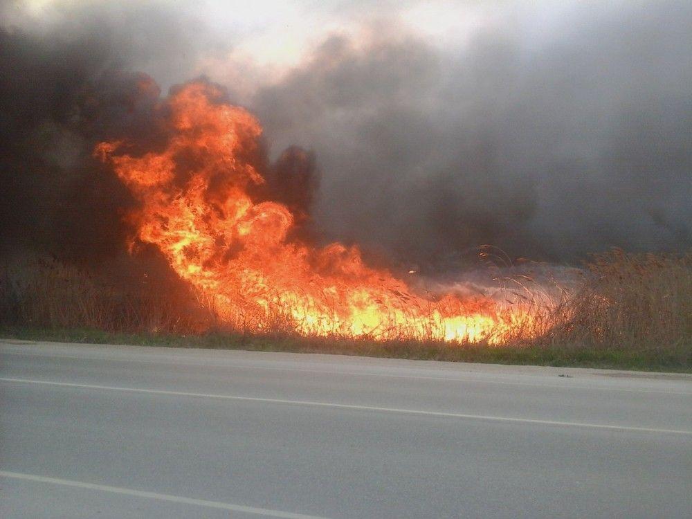 Высокая пожарная опасность сохраняется в Крыму