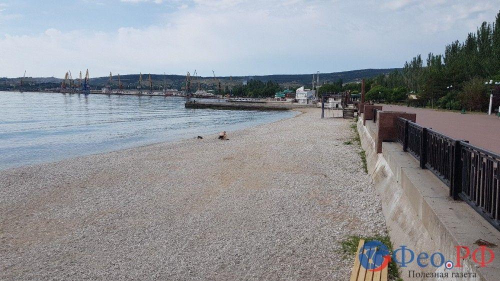 Идет работа над подготовкой пляжа Камешки