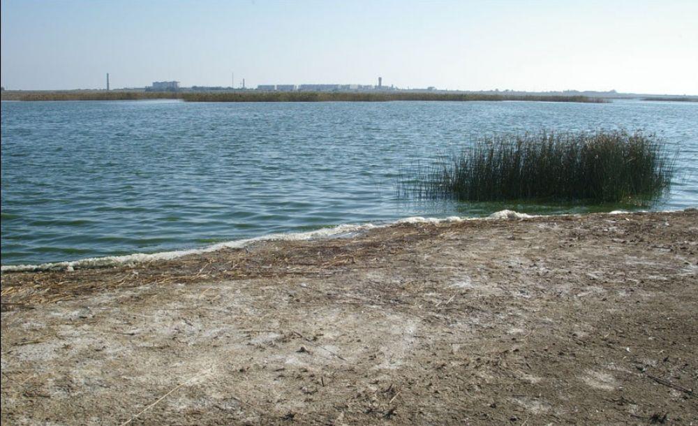 Два феодосийских озера получили статус особо охраняемых