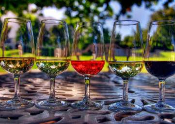Первый винный фестиваль в Коктебеле «In Vino Veritas» открывает онлайн продажу билетов