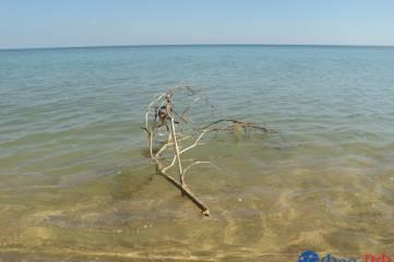 На феодосийскую «Песчанку» тоже прокрадывается цивилизация