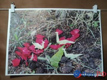 Феодосийский фотоклуб «Фрагменты» представил выставку