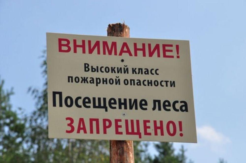 МЧС информирует: посещение леса ограничено