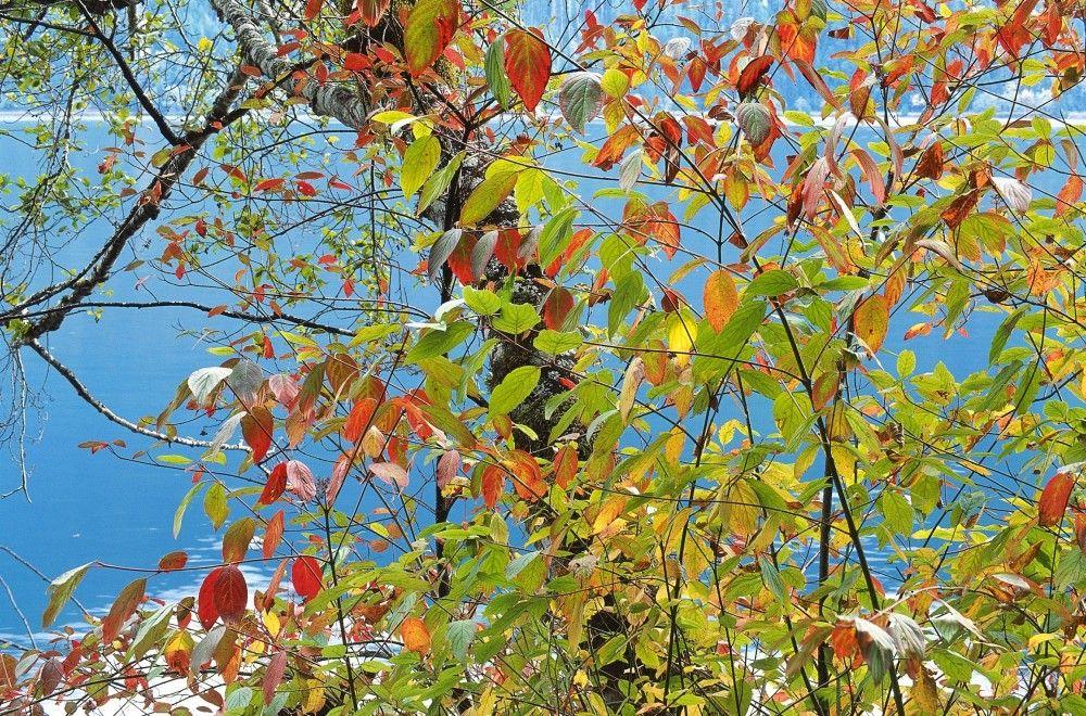 Ветер принесет теплую погоду в Феодосию на всю осень