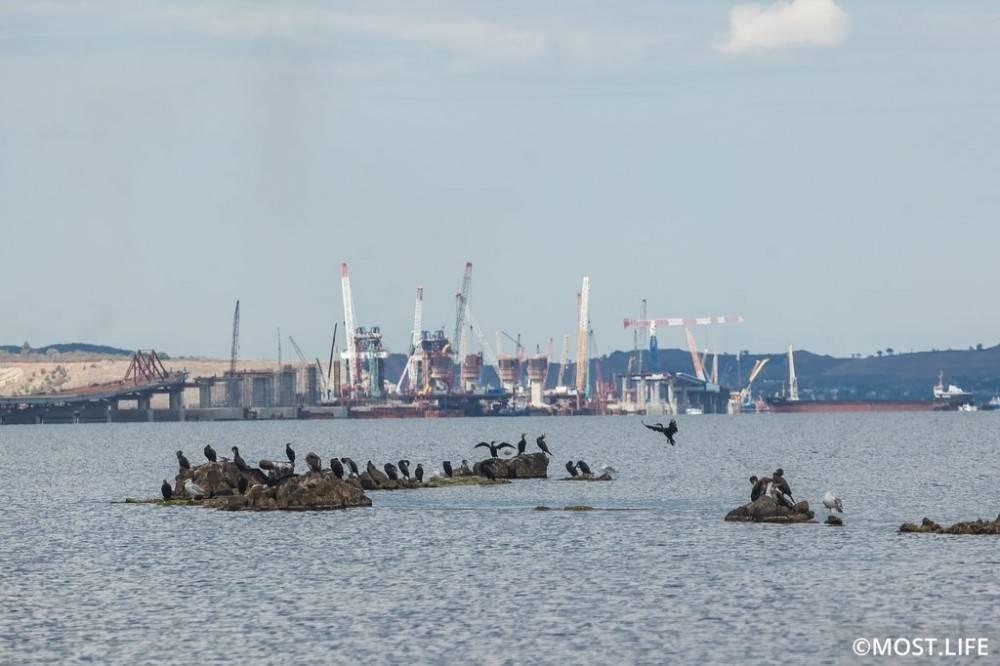 Крымский мост назвали самой популярной стройкой России