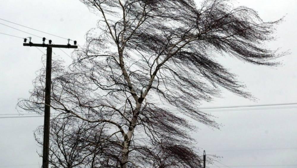 Сильный ветер сохранится в Крыму и завтра