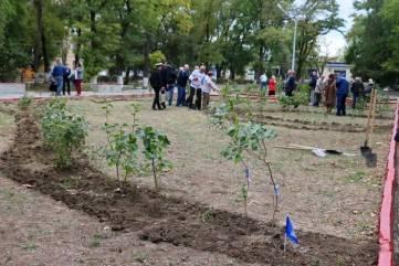 Керчане высадили саженцы сирени в сквере летчиков (ФОТО)
