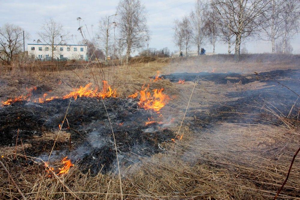 Пожарные тушили горящую траву в Коктебеле и Южном