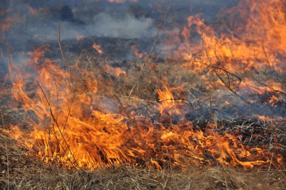 В Ленинском районе у вокзала горела трава и опавшие листья