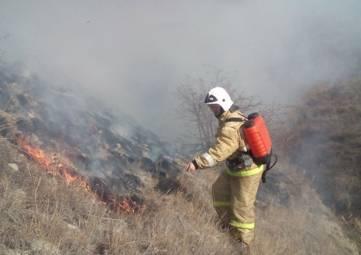 Под Феодосией чуть не загорелся лес