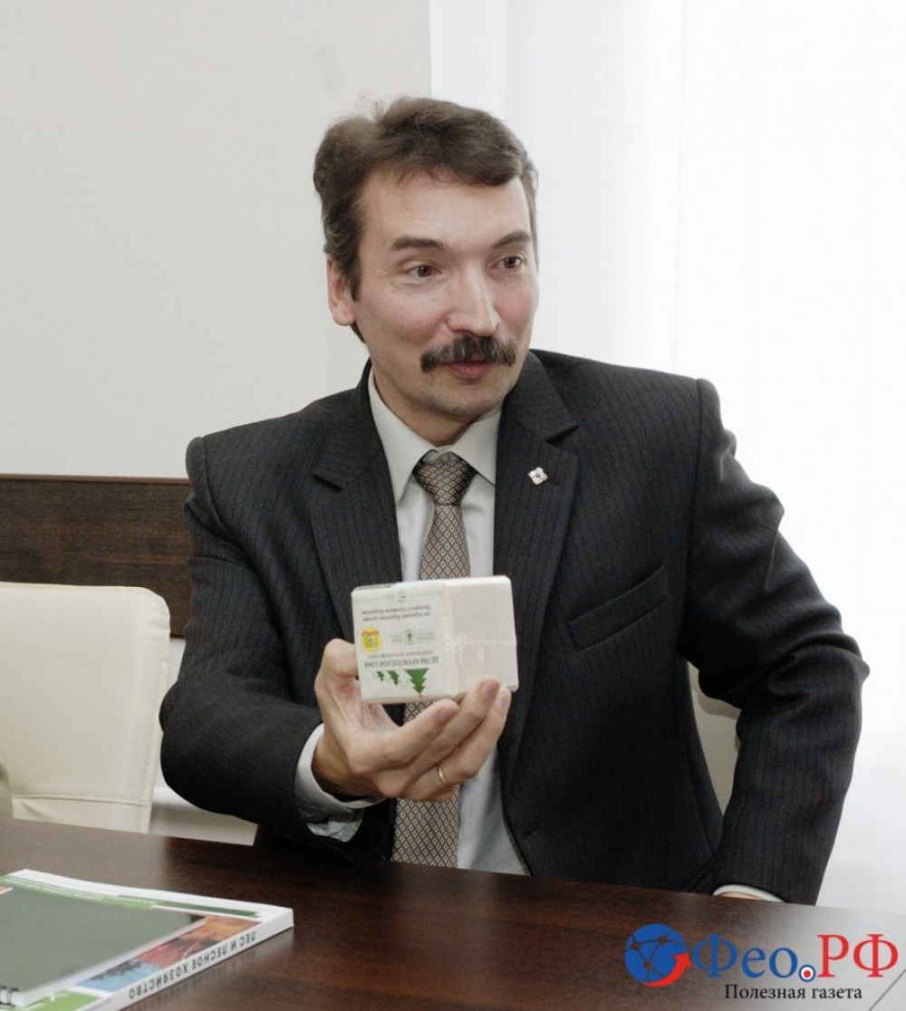 Феодосии подарили десять семян кремлевской елки