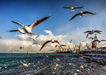 Что изменится в Крыму с сентября