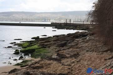 Осенний Комсомольский парк, пляж Лазурный берег