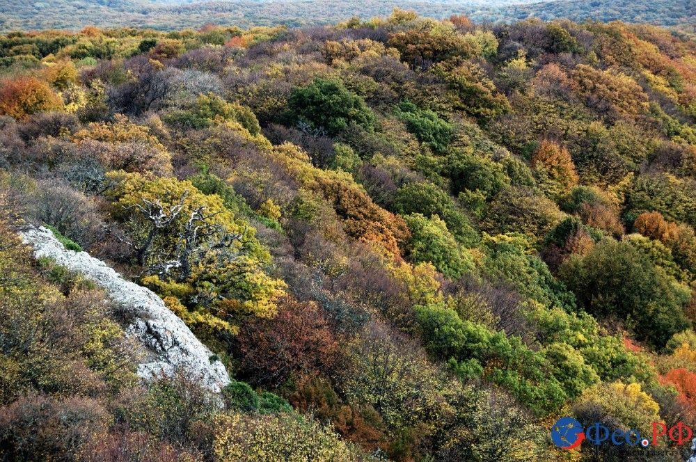 В котловине Внутренней гряды Крымских гор. Осенний Кокташ